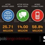 Liczby polskiego internetu 2016